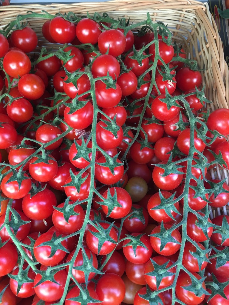 Cherry Tomatoes fresh from the garden