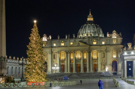 Vatican Christmas tree 2019