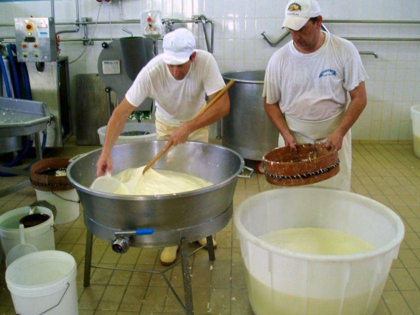 How buffalo mozzarella is made in Italy