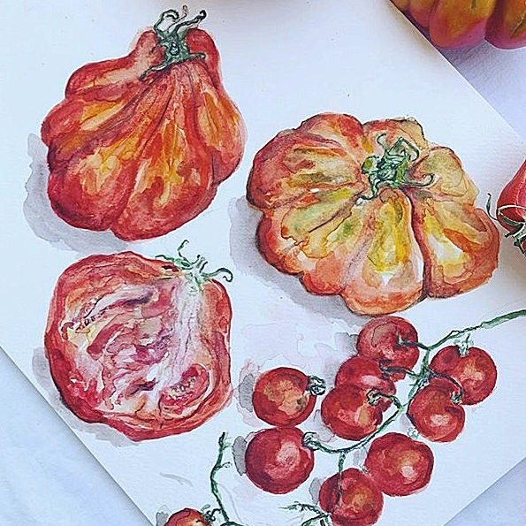 Market produce illustrations by Letitia Ann Clark