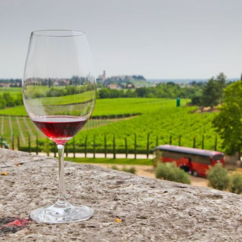 A view over the Ugolini vineyard in the Valpolicella wine region Jim Cook/Getty Images