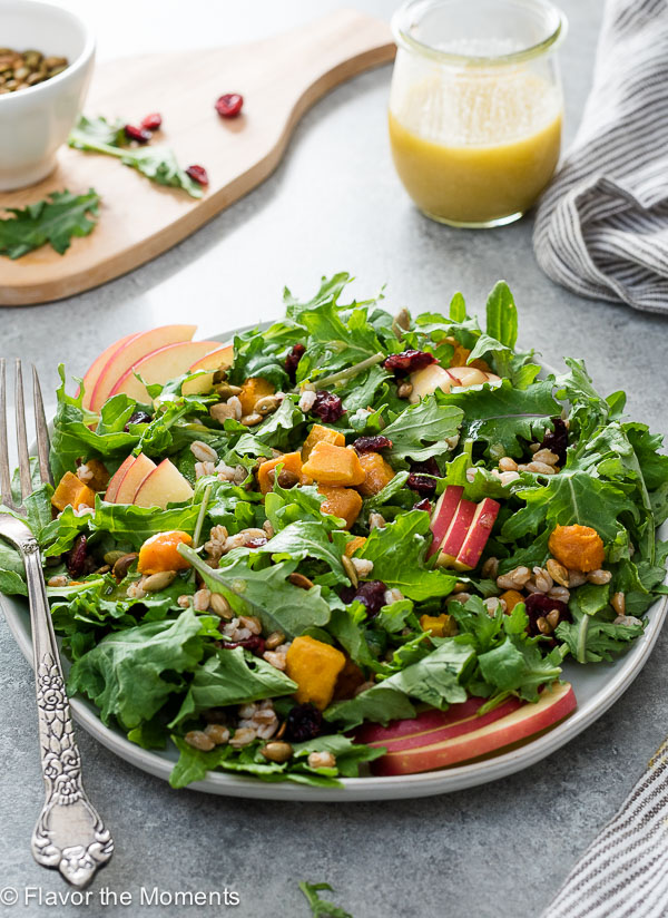 Harvest Butternut Squash Kale Salad with Farro is a hearty fall salad tossed in a sweet, tangy apple cider dijon dressing!