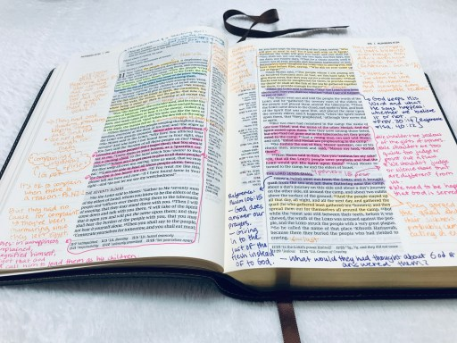 Bible color coding, Bible with numbers 11 highlighted and annotated using a bible highlighting system, how to use color code to study the Bible