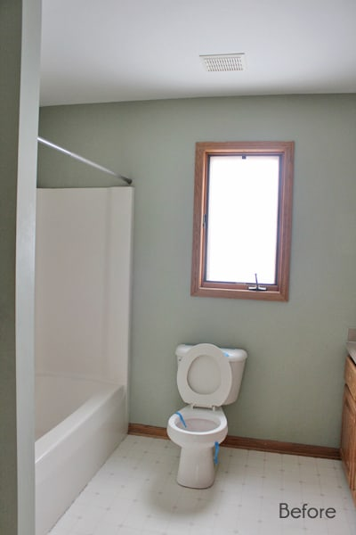 Full Bathroom Before