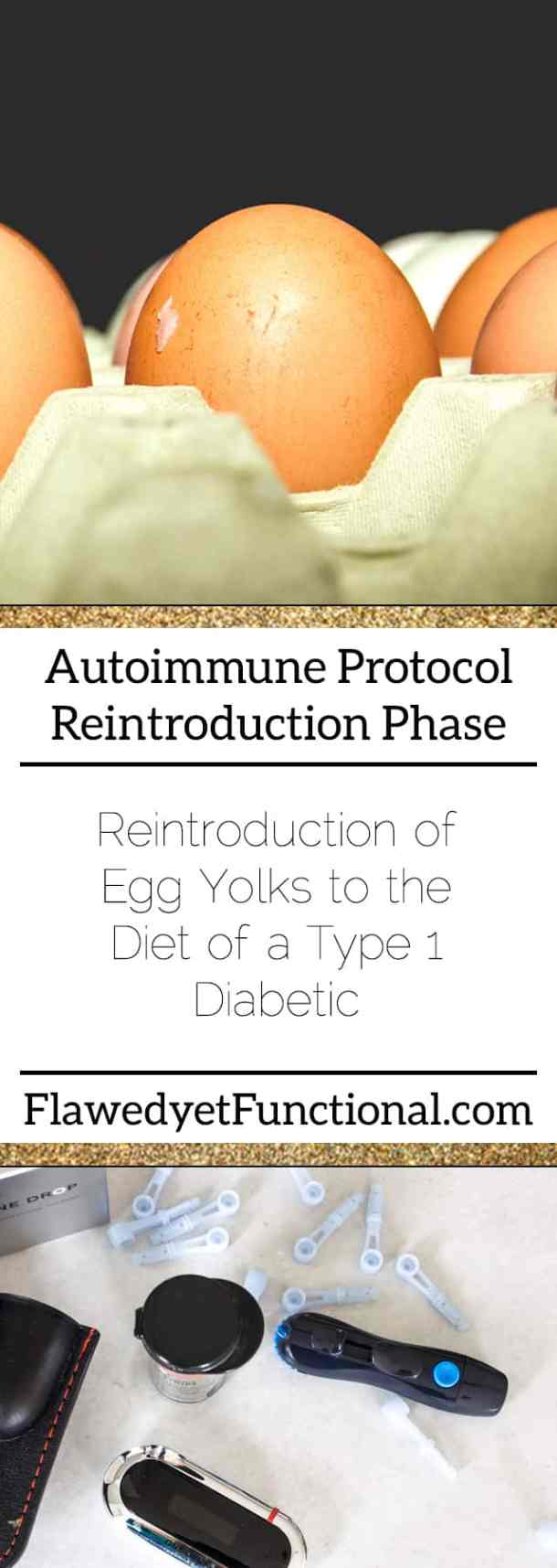 AIP Reintroduction Egg Yolk