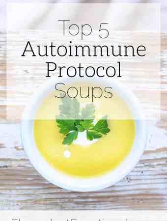 top 5 autoimmune protocol soups
