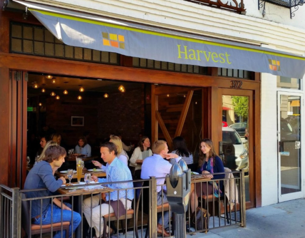 Harvest Wine Bar Greenwich Review