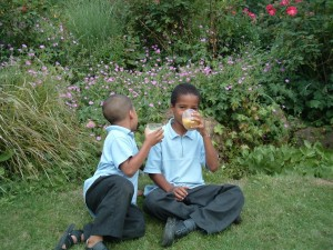 Boys enjoying a dairy-free linseed oil smoothie