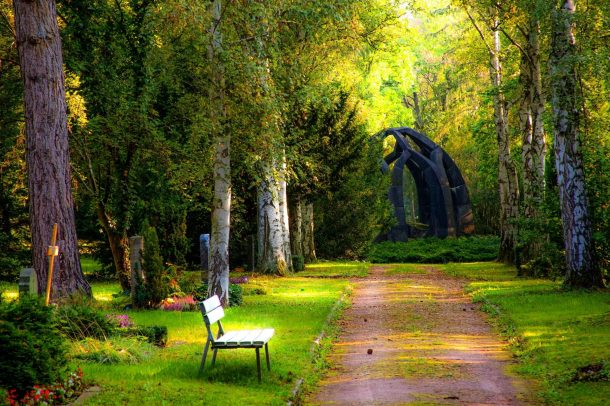 A backyard meditation garden with a bench, statue, and grass surrounded by green trees