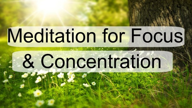 A grassy and sunlit field with white flowers is the background of Meditation for Focus and Concentration