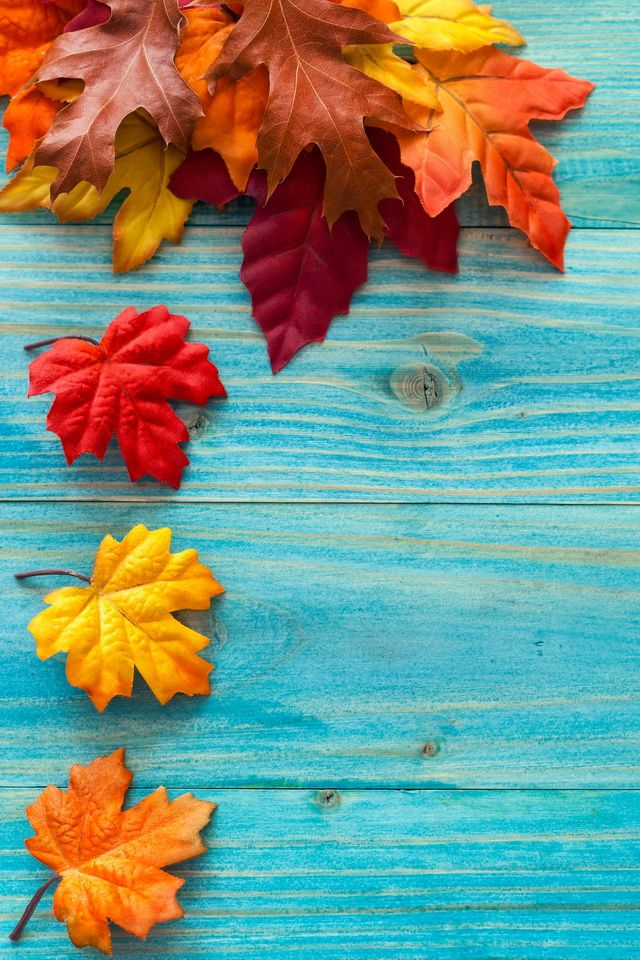 056f676488127526834191e24d2c9169-fall-backgrounds-iphone ...