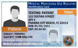 Florida Medical Marijuana Use Registry ID Card Example