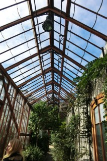 Glass house roof