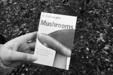 Mushroom book