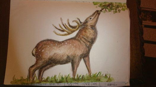 Steph's deer for our poster