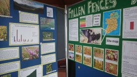 Some nice posters by other groups!