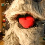Wolfun - mouth