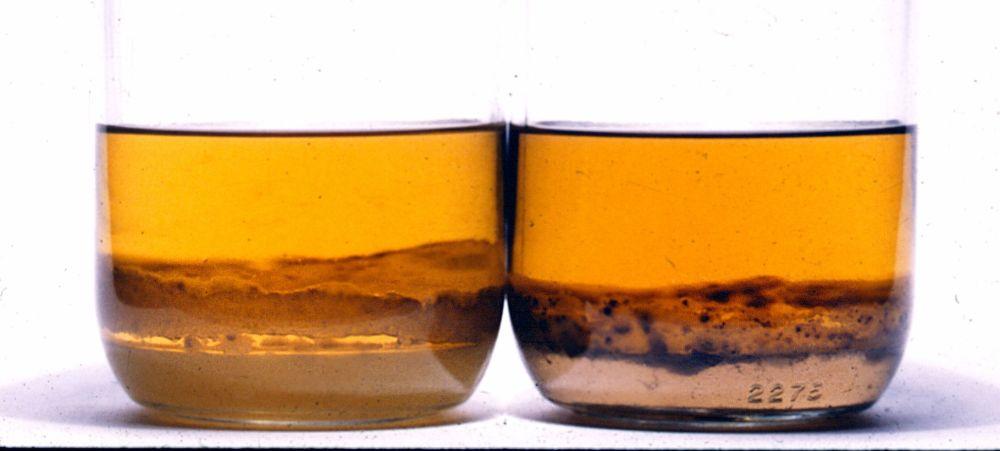 medium resolution of keeping diesel fuel clean