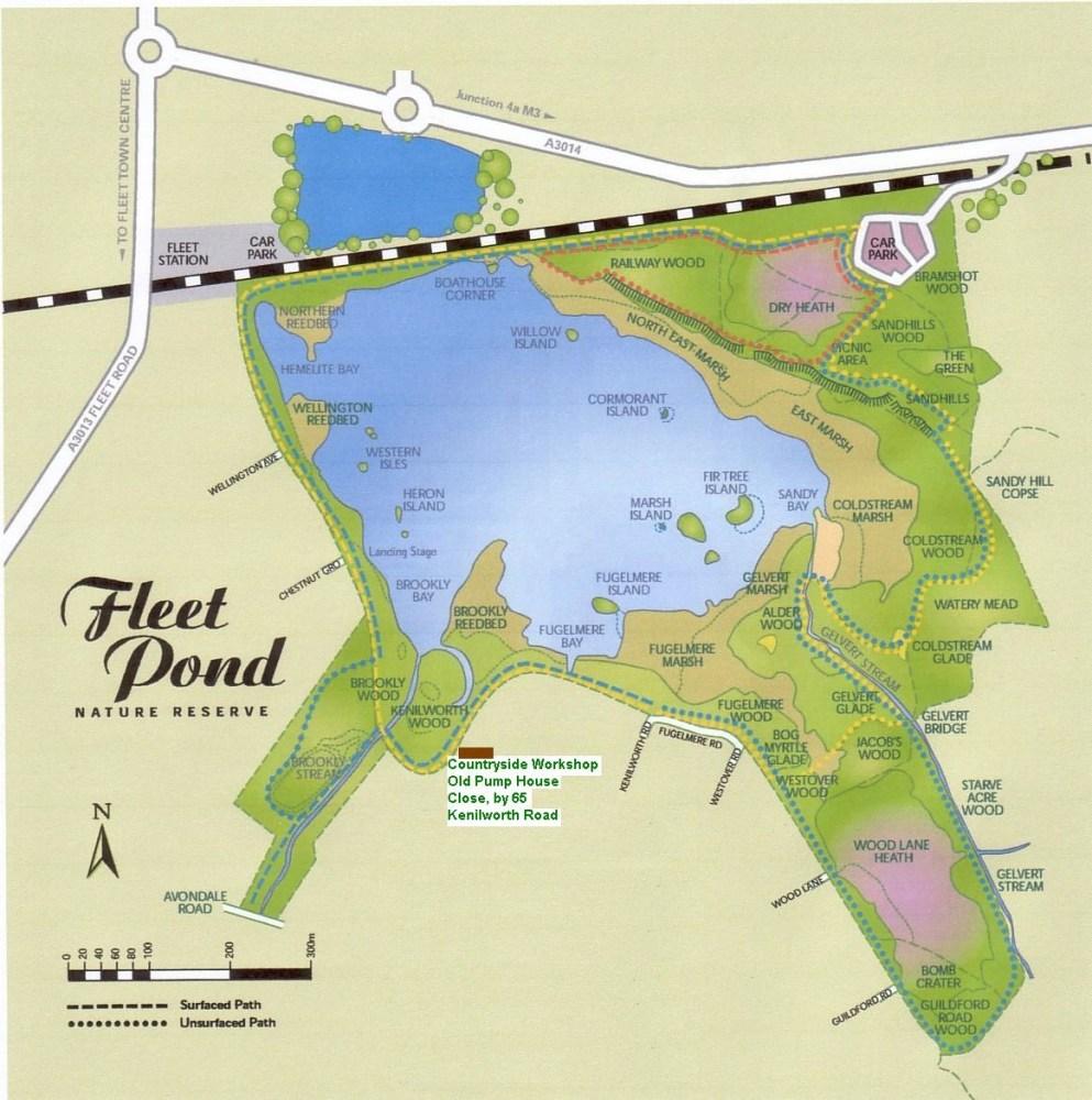 Walks Around The Pond