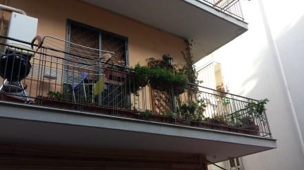 urban gardening in pozzuoli
