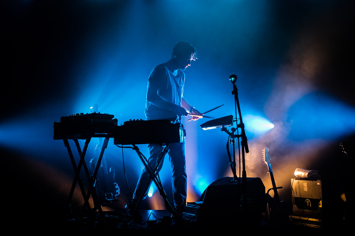 Image result for bonobo live
