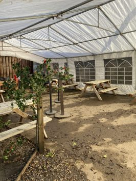 covid marquee - outdoor seating