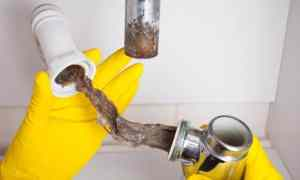 Top Causes of Clogged Drains and How To Avoid Them