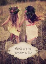 Friends brighten up our path in life