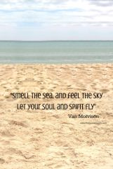 Dip your toes in the sand, swim in the sea..