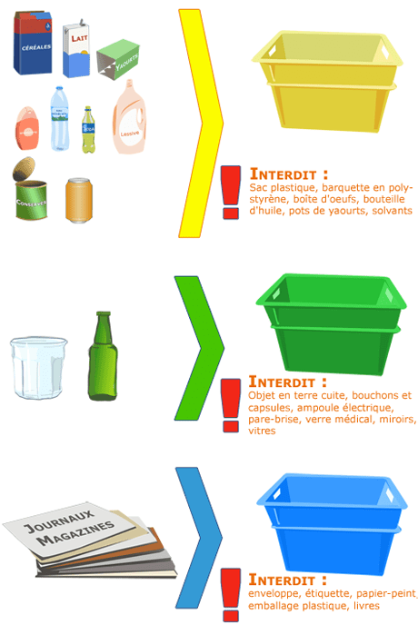 Tri Selectif Couleur Des Poubelles : selectif, couleur, poubelles, Quand, Sélectif, Bureau, Fleur, Menthe