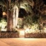 petit jardin de nuit - small garden in the night