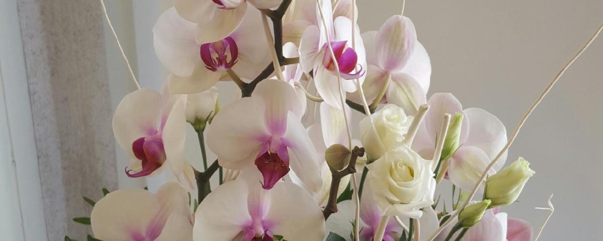 Composition par La Jarre Provencale fleuriste à Cheval Blanc-84460