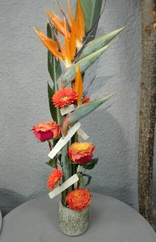 L'Orchidee