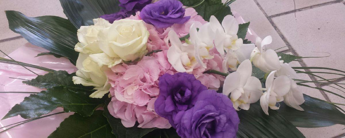 Fleurs du Mistral