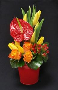 Tulipes en folie