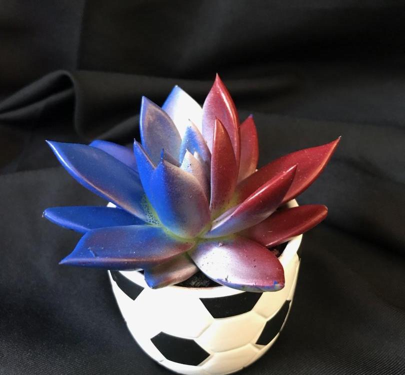 Mini Fleur
