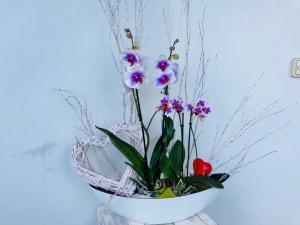 Virginie Sartis Fleuriste Décor et Location