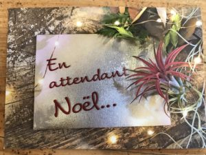 B.Cornut fleuriste en attendant Noel 1-2