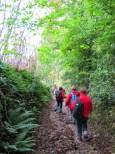 La randonnée du 20 octobre à Beaumont-en-Auge