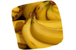 Des bananes bio