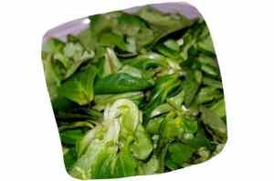 Recette de la salade au camembert rôti : mâche lavée
