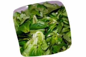 Recette de salade de mâche, endives et mangue : mâche lavée