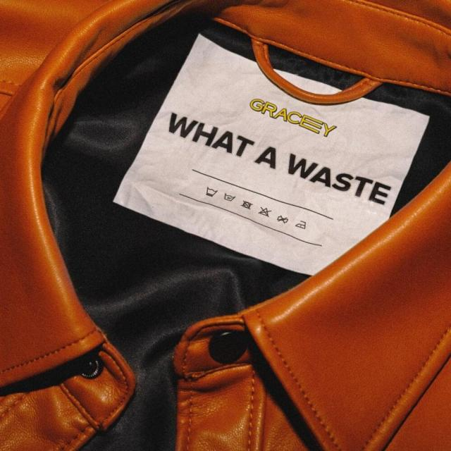 GRACEY - What A Waste Mp3 Download