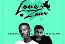 Acetune & Larry Gaaga – Love Zone Album Download