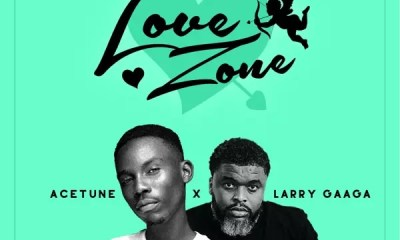 Acetune & Larry Gaaga – Love Zone Album Download