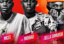 Micee Ft Mohbad Bella Shmurda Carry Mp3 Download