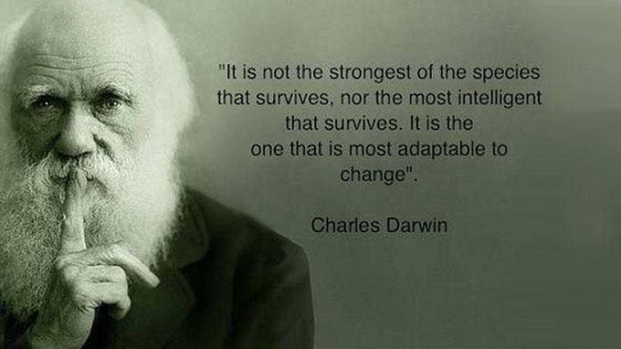 darwinsurvie