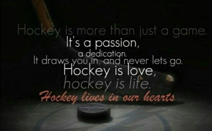 hockey-lives.jpg
