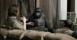 Apes 8
