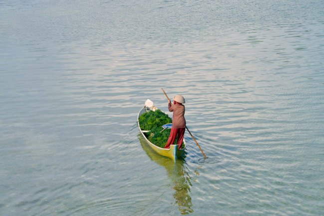 Nusa Lembongan seaweed farmer on a boat with her harvest